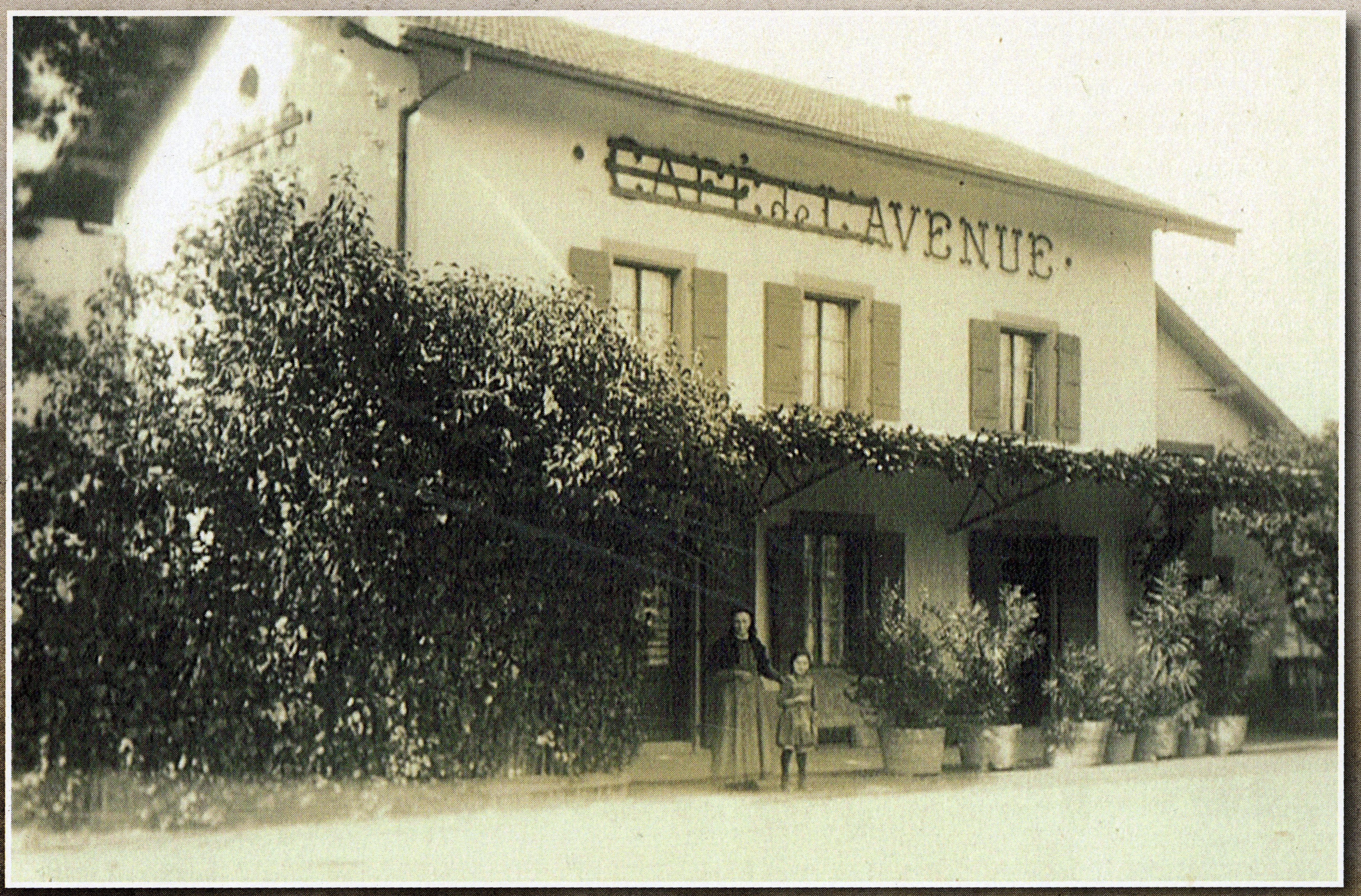 café de l'avenue 2