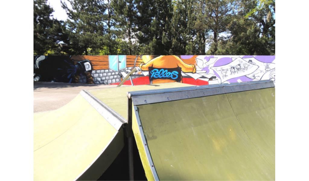 skatepark-de-gaillard-74